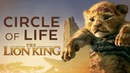 Circle of Life The Lion King 👑