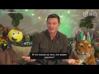 [Rus Sub] CBeebies Bedtime Stories: Luke Evans - The Secret Life of A Tiger