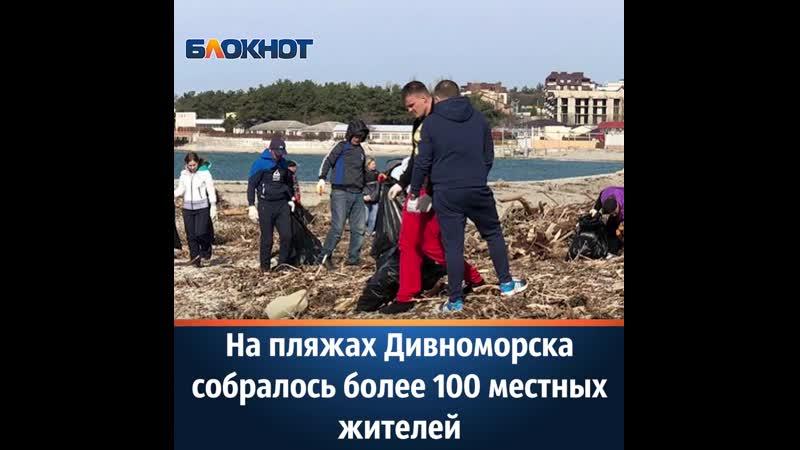 На пляжах Дивноморска собралось более 100 местных жителей 1