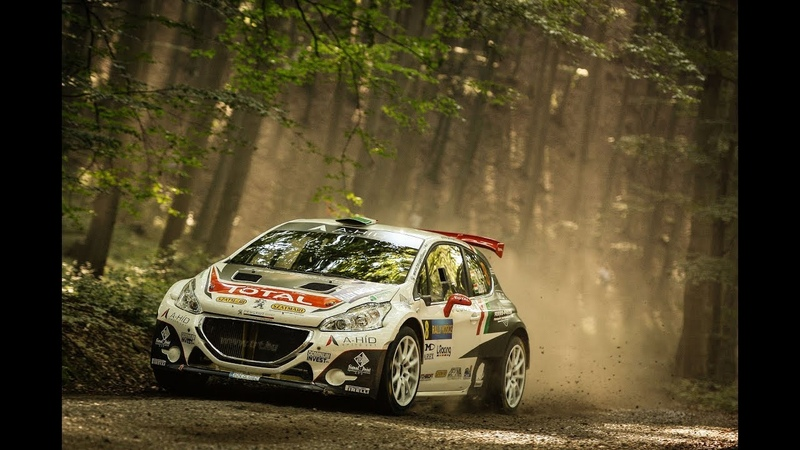 Dirt Rally 2.0 Peugeot 208 R5 T16