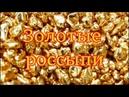 Золотые россыпи или непристойное предложение ВМЕСТЕ