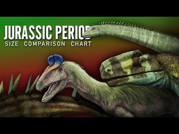 JURASSIC PERIOD. Dinosaurs and other animals. size comparison chart- Paleoart