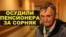 Силуанов против народа и суд над ветераном труда