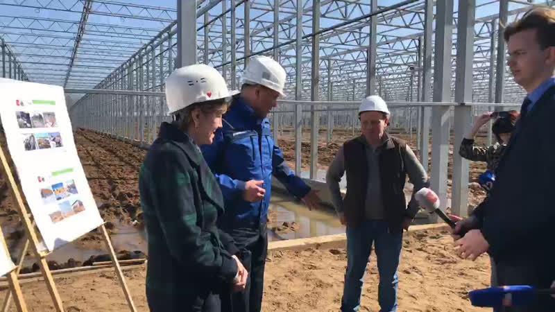 Строительство тепличного комплекса «Новый» в Череповце