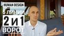 Дизайн Человека 2 и 1 ворота 6 линии Даниил Трофимов Human Design