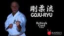 Goju ryu karate bázistechnikák goju ryu kihon waza Kapocs Sportprogram