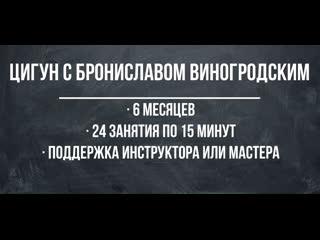 Онлайн-курс «Цигун с Брониславом Виногродским» | 24 занятия | 6 месяцев | Для начинающих и опытных