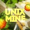 UnixMine » Успешный сервер