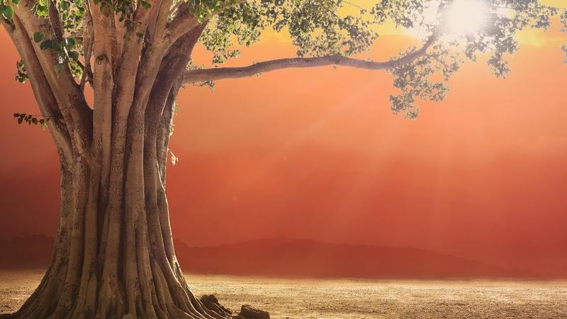 Магическая исцеляющая мантра Прана Апана Сушумна Хари медитация