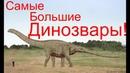 Топ Самых Больших Динозавров.