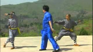 Fanzi Quan Puño Que Cae Wushu Marcos Barrera 7