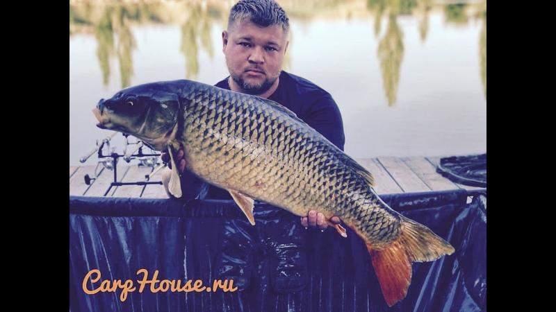 Рыбалка в Крыму, озеро Украинка, карпфишинг.