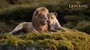 The Lion King   Can You Feel The Love Tonight? (TV Spot)