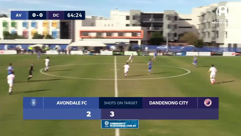 NPL Victoria U20 Round 14, Avondale FC vs Dandenong City