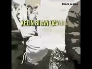 islam_nuri24+InstaUtility_56292.mp4