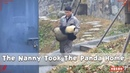 The Nanny Took The Panda Home iPanda