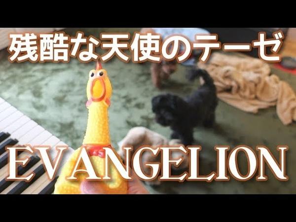 残酷な天使のテーゼ びっくりチキンで演奏してみた Chicken Cover A Cruel Angel's Thesis EVANGELION OP