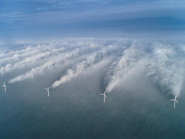 Ветряная ферма Хорнс Рев, Дания
