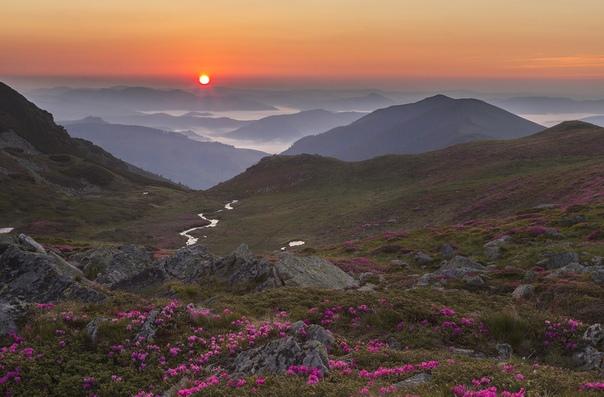 Прекрасное утро в горах Родна, Румыния