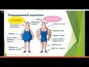 Ничего не ем и толстею Стресс Кортизол Глюкоза Инсулин Занятие 6 Школы диетологии