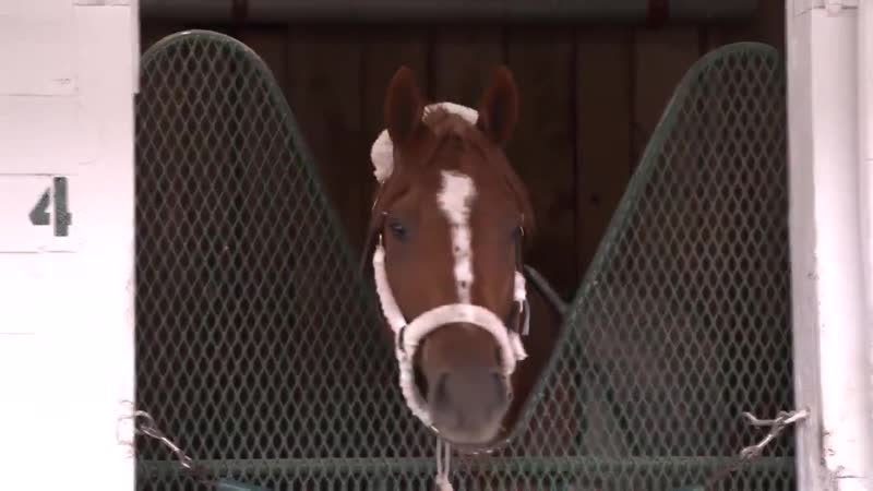Country House is settling in at Churchill Downs