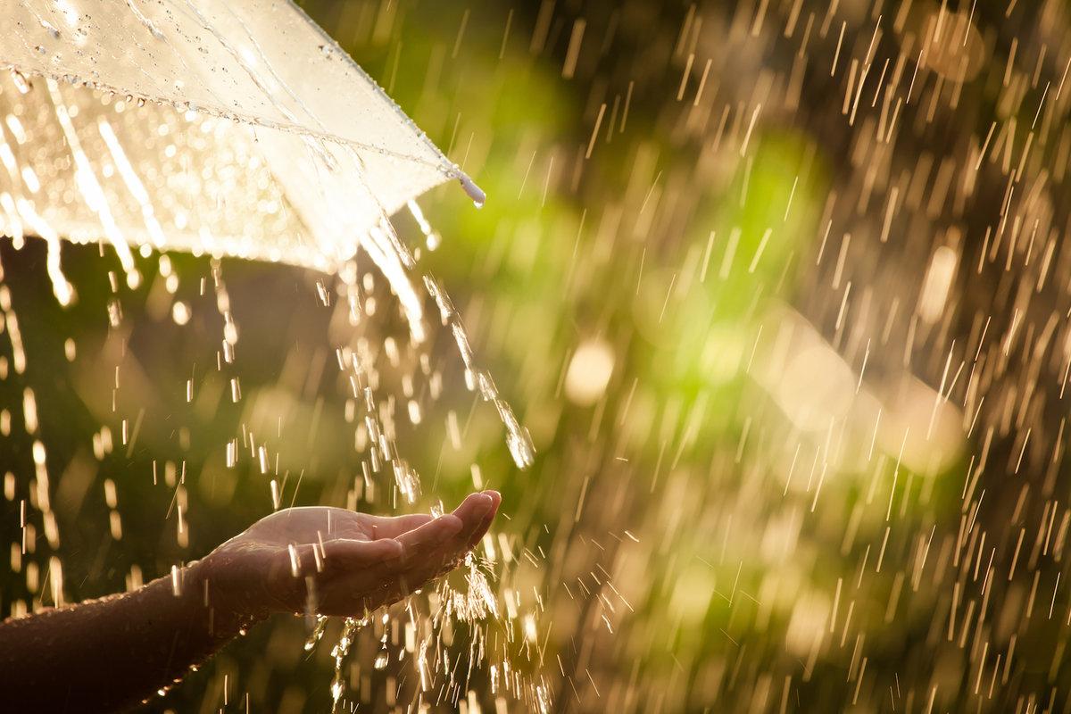 Лето одного дождя наливают
