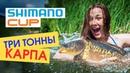 Настоящий карпфишинг на Shimano Russian Cup Прикормка Dynamite Baits Ловля карпа в начале сезона