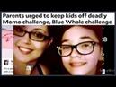 СМЕРТЕЛЬНЫЕ ВИДЕО ИГРЫ ДЛЯ ДЕТЕЙ «MOMO ВЫЗОВ» И «ВЫЗОВ ГОЛУБОГО КИТА»