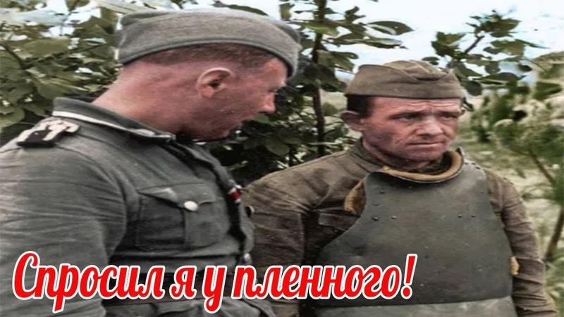 Чем ваш Сталин лучше нашего Адольфа - Спросил я у пленного. Ответ русского поставил меня в тупик.