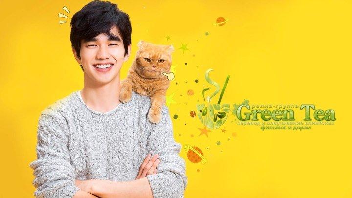 GREEN TEA Кошка моей мечты 01