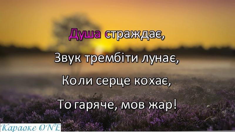 Кудлай Алла Гуцулка Ксения Караоке версия Full HD