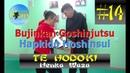 14 TE HODOKI - Henka Waza (Bujinkan Goshinjutsu Hapkido Hoshinsul 2019)