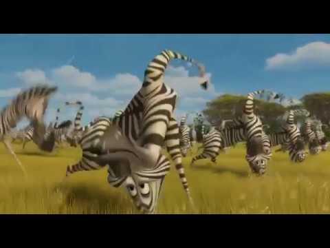Мадагаскар 2 Мартин и зебры