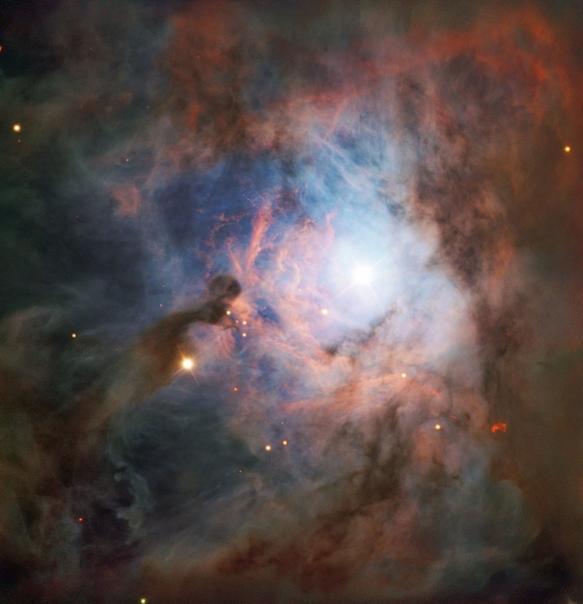 NGC 2023 в созвездии Ориона  одна из крупнейших отражательных туманностей на небе.