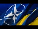 Станут ли Крым и война на Донбассе помехой для вступления Украины в НАТО: ответ эксперта США