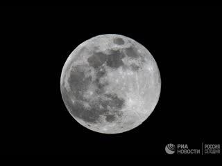 Полнолуние 'micro harvest moon'
