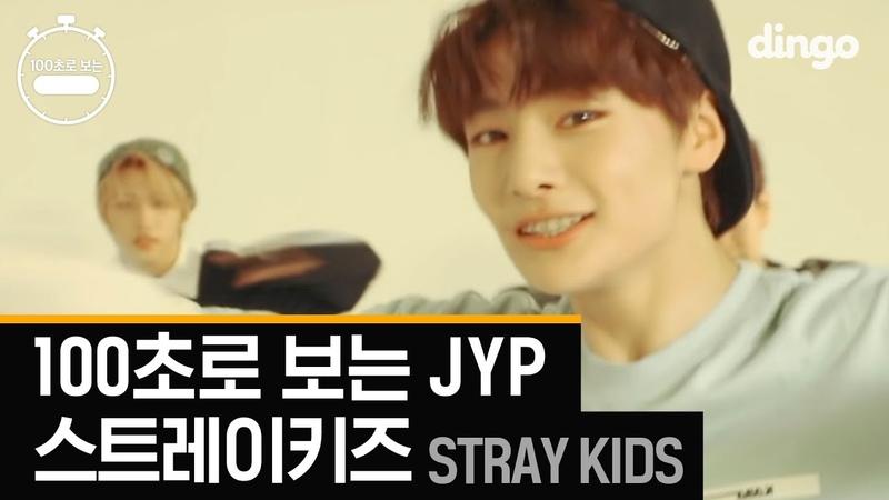 스트레이 키즈의 [100초]로 보는 JYP 댄스 총정리! Stray Kids 100 Sec JYP [4K고화질 댄스]