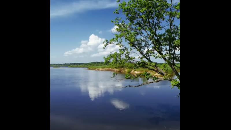 река Ветлуга на канале ютуб вонт ток