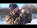 Охота на гуся.Часть 3.Маним гусейкогда какие звуки