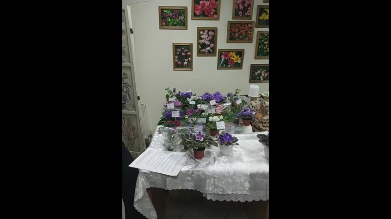 Лекция Удобрения и подкормки для выращивания сенполий