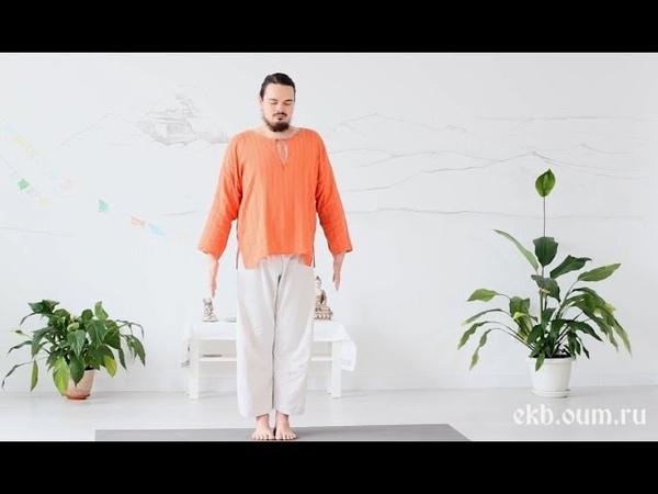 Йога для начинающих отстройка асан (тадасана)