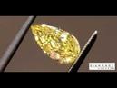 Canary Pear Diamond R8712