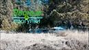 Апрельский поход. Когда растает снег в лесу?