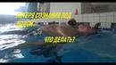 Потеря сознания под водой (Blackout). Что делать? Лекция и тренировка в бассейне
