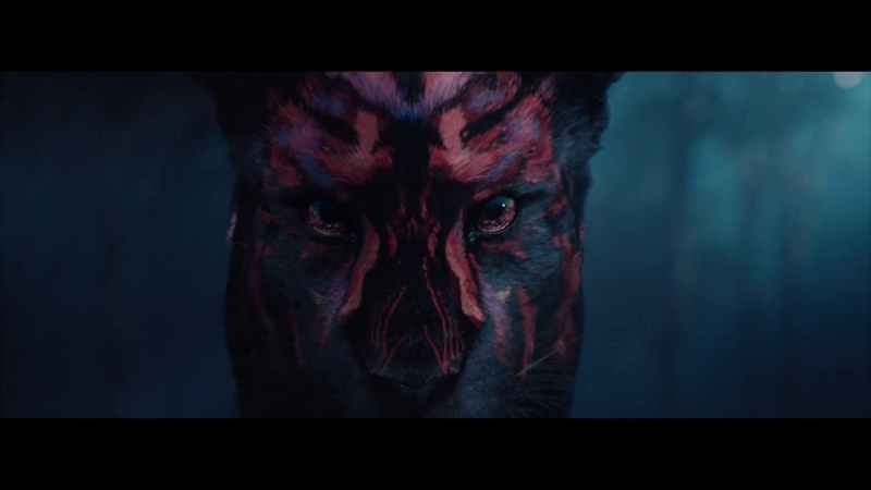 The Odd One Out Forward Festival Main Title Sequence
