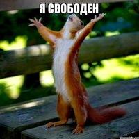 Анкета Артем Полшков