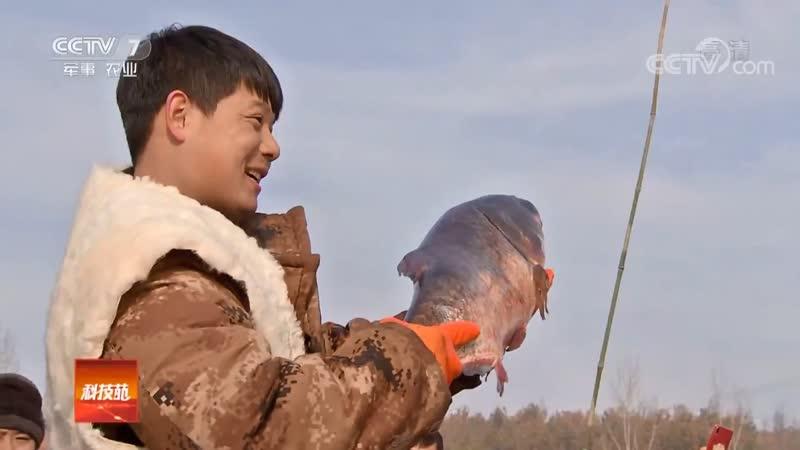 Грандиозная зимняя рыбалка ''Бин Дяо'' (подлёдная рыбалка) на северо-востоке Китая. Лёд ''Бин''. Крепкий лёд ''Цзянь Бин''. Прор