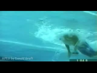 Michael phelps technique