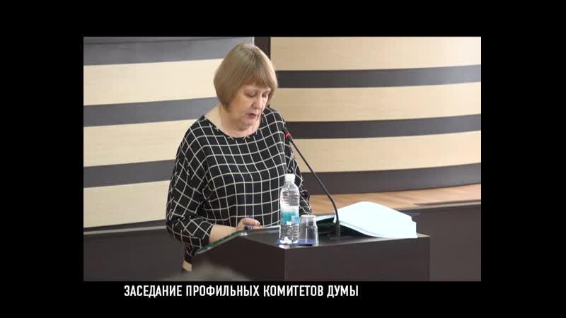 Заседание профильных комитетов Думы