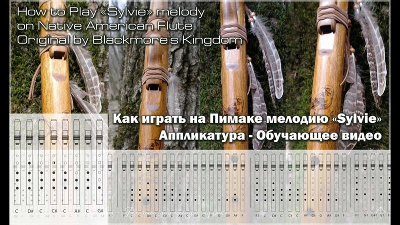 Как играть на пимаке мелодию - How to play Sylvie melody (by Blackmore) - NAF F